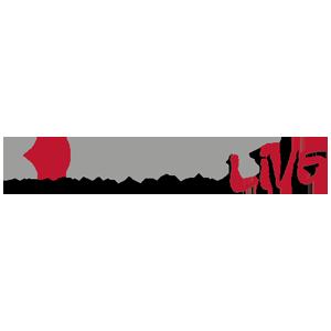 COMM-TEC LIVE
