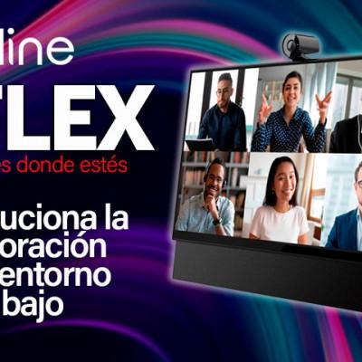 DEMO FLEX